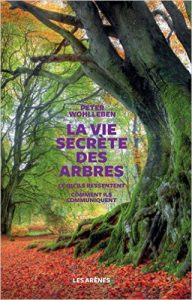 la vie secretes des arbres avril 17