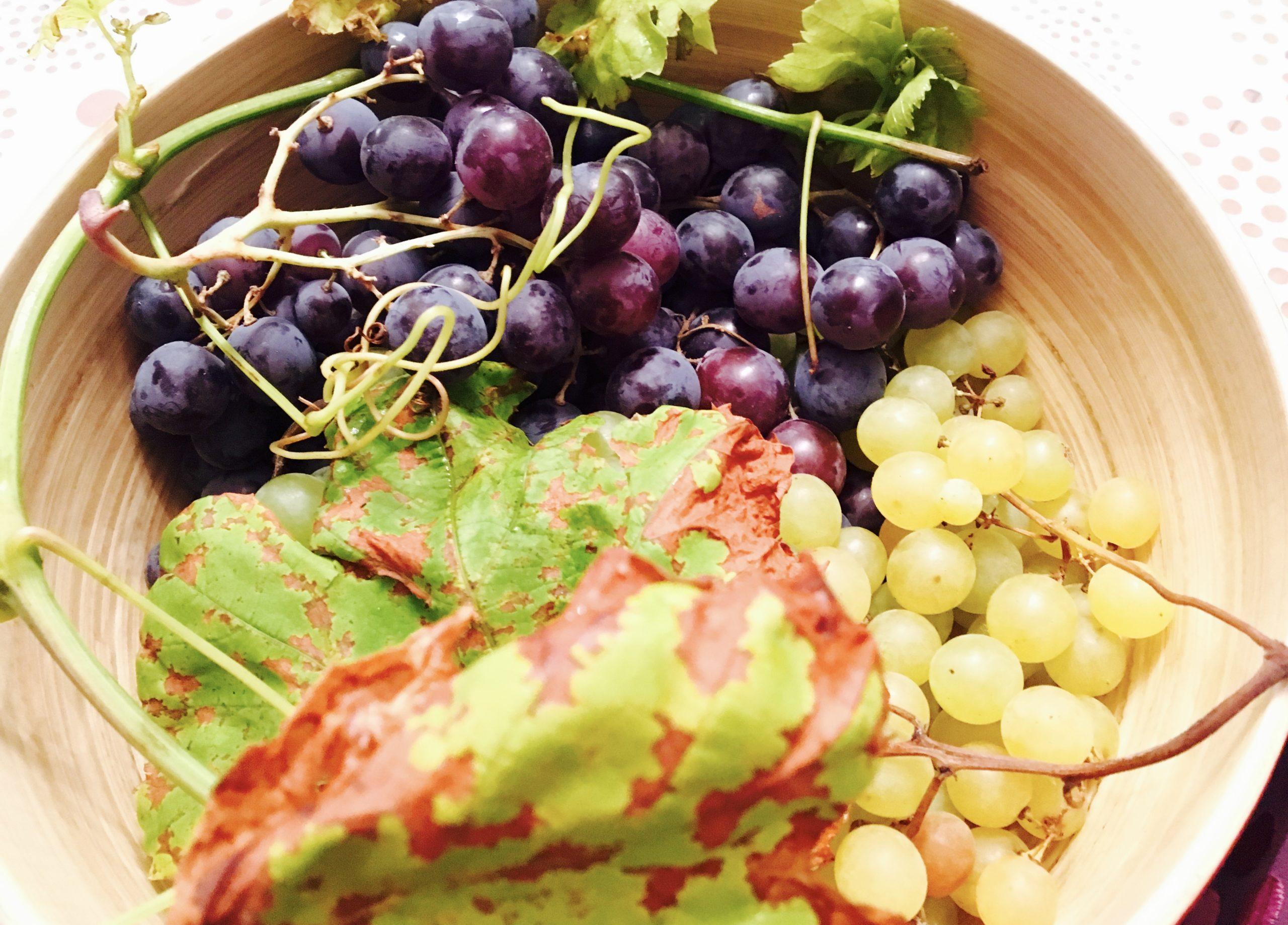 La cure de raisin recommandée pour les hypersensibles.
